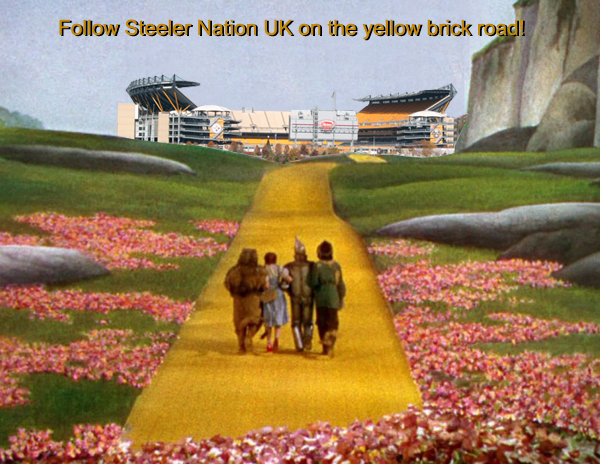 Steeler Nation 2014